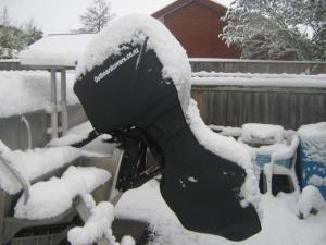 Mercury 100hp in the snow
