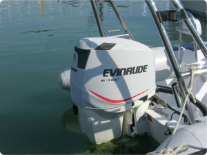 175 ETec light branded vented outboard cover.