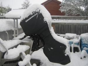 Snow Mercury